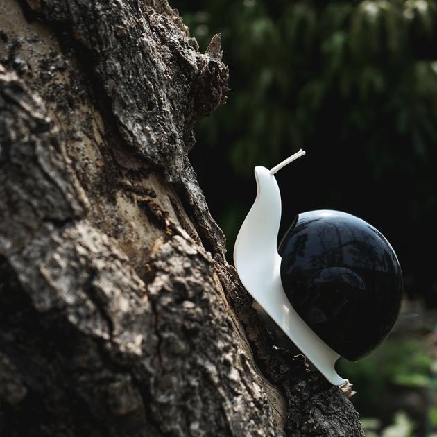 QUALY 蝸牛流口水 (3色) 8