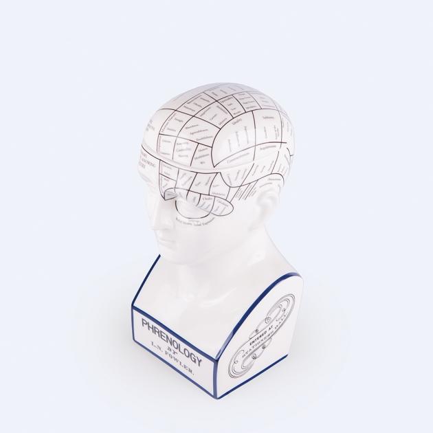 DOIY 大腦思考家-收納盒 3